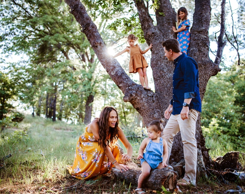 San Diego Family Photography, family of 5 with older 2 children climbing up into a tree
