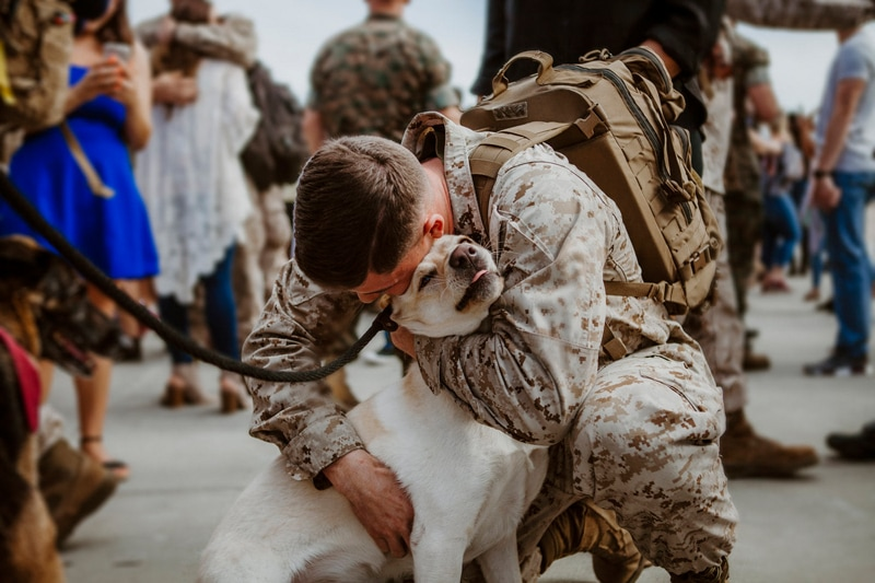 San Diego Military Homecoming, soldier hugging their dog